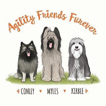 Agility Friends Furever: Conley, Myles, Kirbee by ShortCoffee