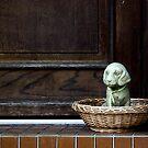 Watchdog by Kurt  Tutschek