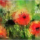 English Poppies by John Lynch