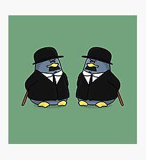 Thomson and Thompson Penguins Photographic Print