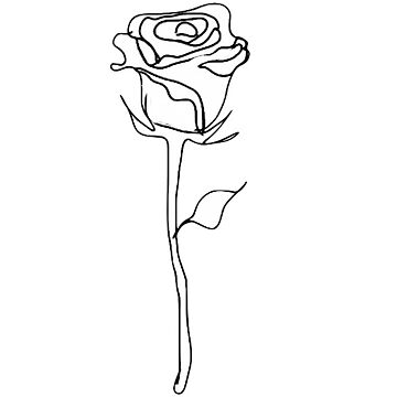 rose outline  de carlac