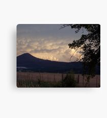 Medicine for mother earth Canvas Print