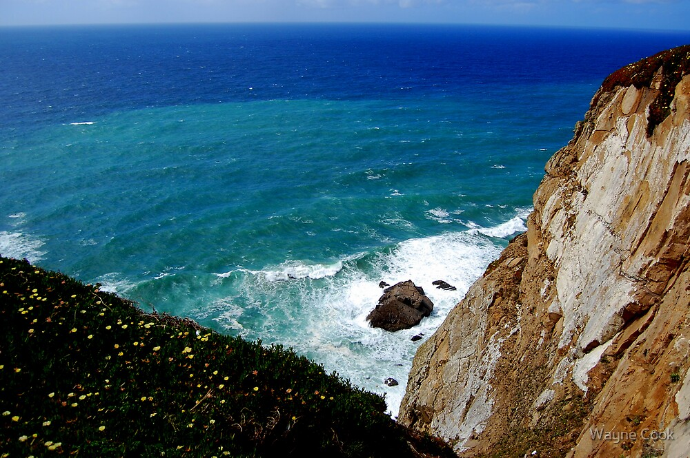 South of Cabo Roca, Portugal,  We inhale the salt air by Wayne Cook