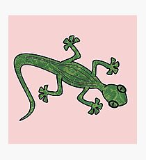 Green Gecko with pattern Photographic Print