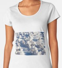 snow photographed in the winter season, which appeared after a snowfall. close-up, Women's Premium T-Shirt