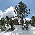 Barn near Berthoud Pass Colorado by janetmarston