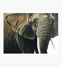 """""""Elephant"""" Wildlife Animal Watercolor Photographic Print"""