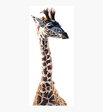 """Little Giraffe"" Wildlife Animal Watercolor Photographic Print"