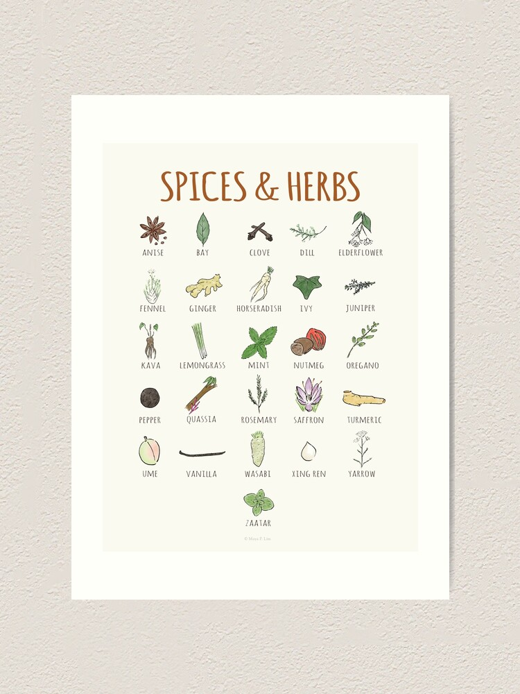 Alternate view of A-Z Spices & Herbs Art Print