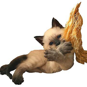 Siamese Kitten with X Sign by juniperdesign