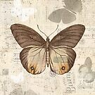 Vintage butterfly by sarknoem