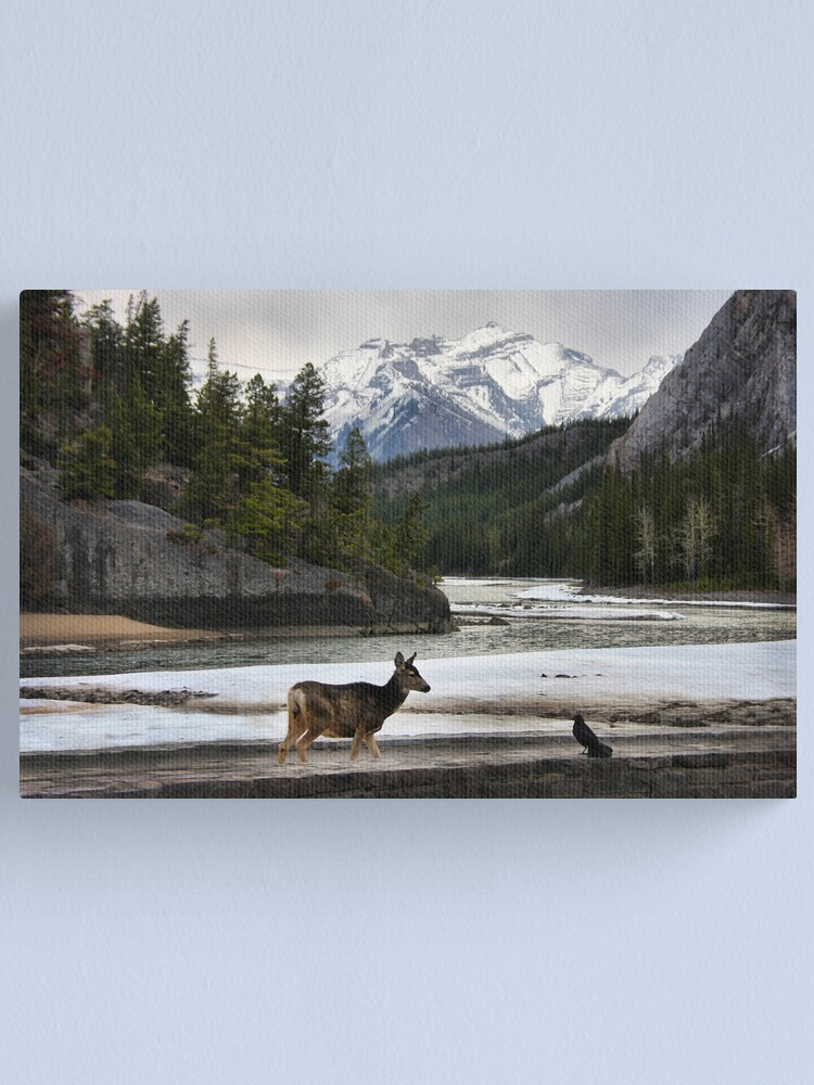 Alternate view of The Deer and the Raven Canvas Print