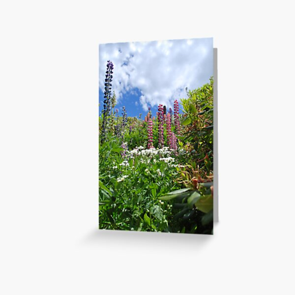 Country Garden Greeting Card