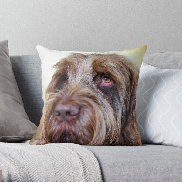 Brown Roan Italian Spinone Dog Head Shot Throw Pillow