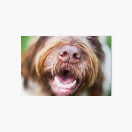 Brown Roan Italian Spinone Dog Laughing Art Board Print