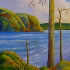Wilderness lake by Veikko  Suikkanen
