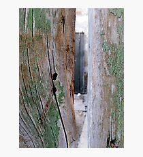 Cyprus Doors Photographic Print