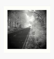 Road to Irlightenment Art Print