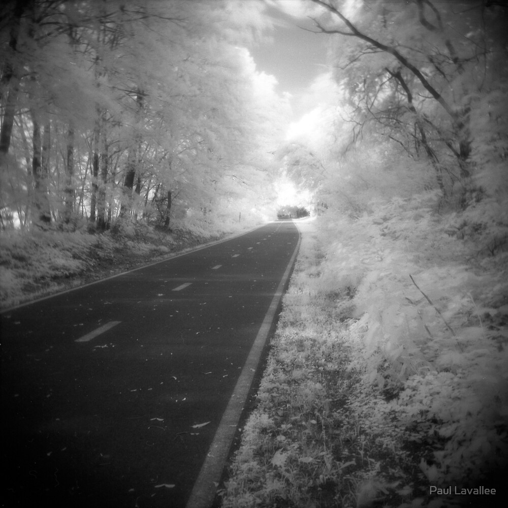 Road to Irlightenment by Paul Lavallee
