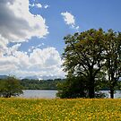 Bavarian Spring Time by Kasia-D