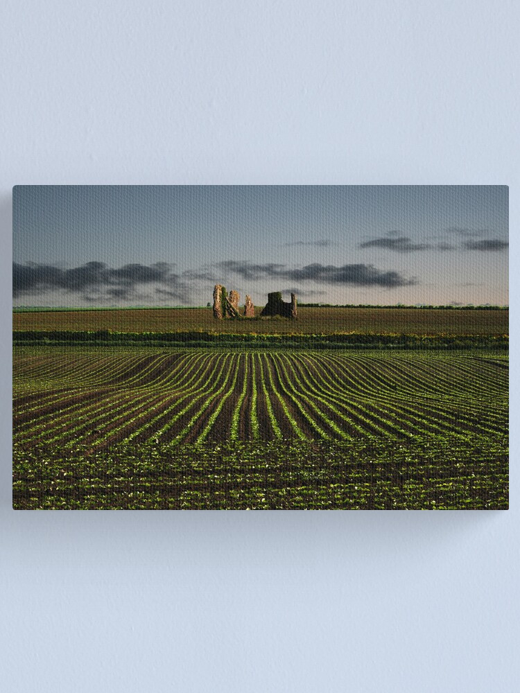 Alternate view of The Ruins of Bacton Abbey Canvas Print