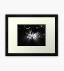 Creeping Framed Print
