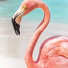 Pink Flamingo by Southern  Departure