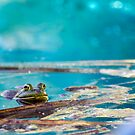 Turquoise Waters by Sue  Cullumber