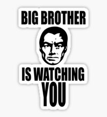big brother isn't watching you 'eagle eye' review: big brother isn't watching but in the idea that this big brother is after you film is worth watching what if big brother wasn't.