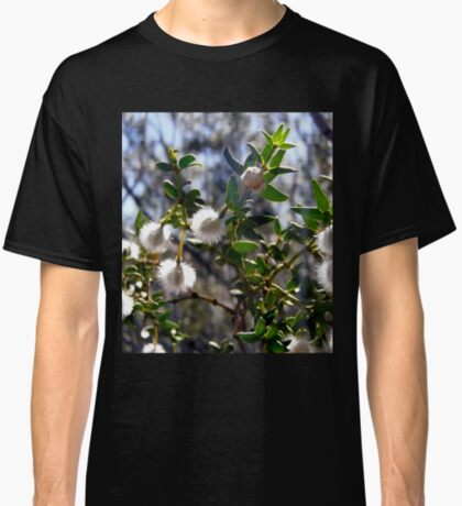 Creosote bush seeds Classic T-Shirt