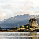 Eilean Donan Castle by Tony Steinberg