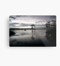 dusk on pond Metal Print