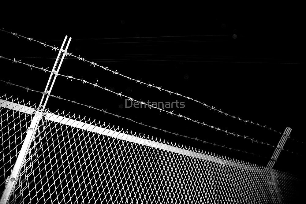 Barbed wire fence by Dentanarts