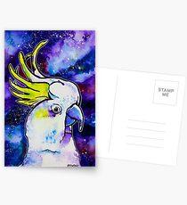 Galaxy Cockatoo Postcards