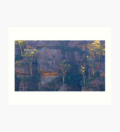 Trees on a cliff Art Print