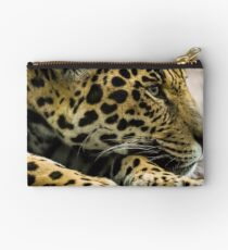 Spirit of the Jaguar Studio Pouch