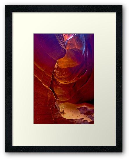 Antelope Canyon 3 by photosbyflood