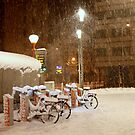 Bicycles in the Snow by annalisa bianchetti