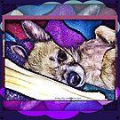 Indigo Chihuahua by Jilly Jesson