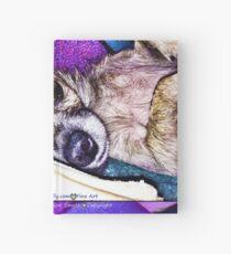 Indigo Chihuahua Hardcover Journal