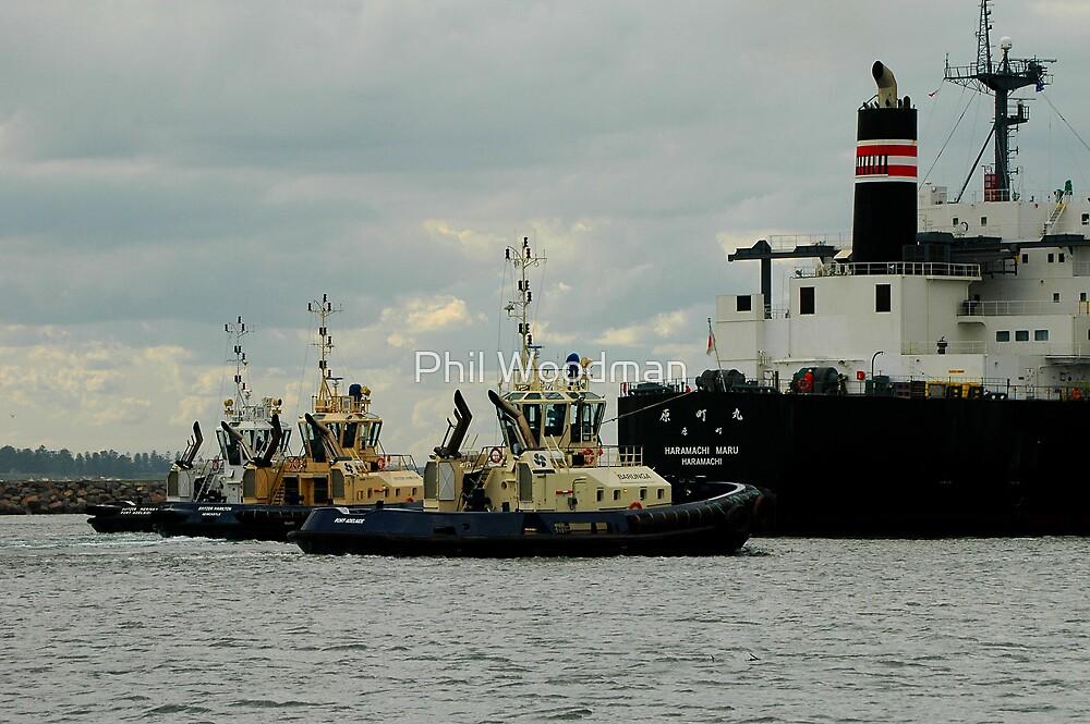 Phillip Woodman's Newcastle Harbour. by Phil Woodman