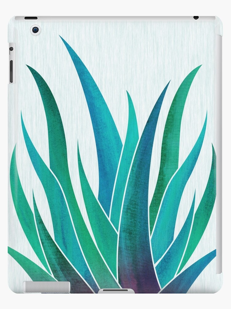 Blue Aloe by moderntropical