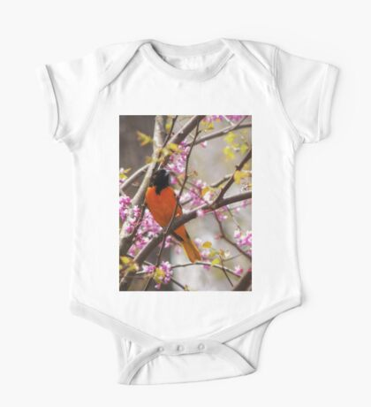 Baltimore Oriole Kids Clothes