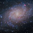 M33 - Triangulum Galaxy by Jeff Johnson
