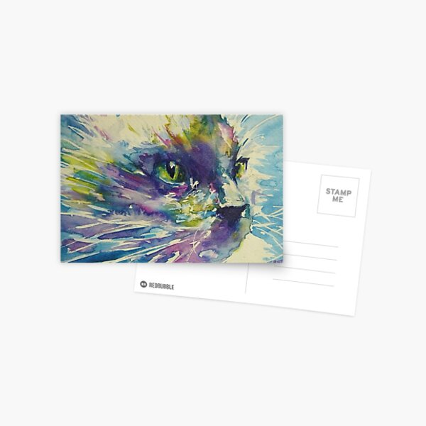 cats whiskers Postcard