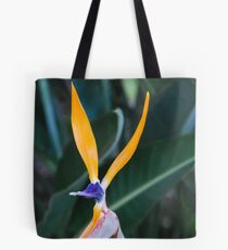 """""""What's Up Doc?"""" Tote Bag"""