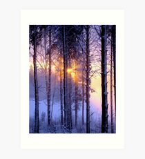 After the Snowstorm Art Print