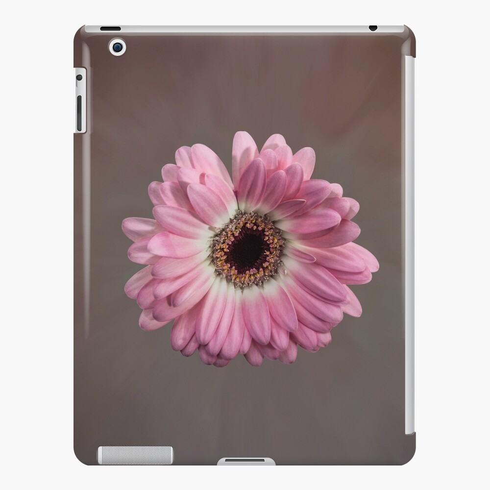 Single pink Gerbera Flower iPad Case & Skin