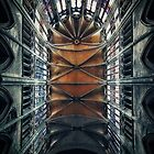 Gothic cathedral by ZILVINAS DEGUTIS