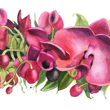 Watercolor flowers. Dark red orchids. by lamarmarina